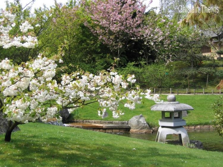 Wallpapers Nature Wallpapers Parks Gardens Jardin Japonais De