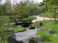 Fonds d'écran Nature jardin japonais de Hasselt