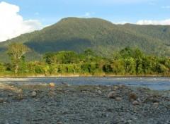 Fonds d'écran Voyages : Amérique du sud Rio en la Selva ecuatoriana