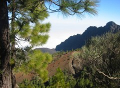 Fonds d'écran Voyages : Afrique Tenerife - Massif du Teïde