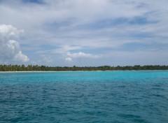 Fonds d'écran Nature île Saona