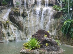 Wallpapers Nature cascade en Guadeloupe !