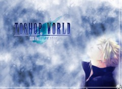 Wallpapers Brands - Advertising ToshopWorld-Final Fantasy