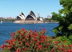 Wallpapers Trips : Oceania L'Opéra de Sydney