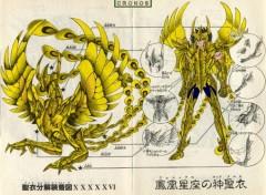 Fonds d'écran Manga armure divine du phenix