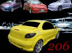 Wallpapers Cars 206 passion