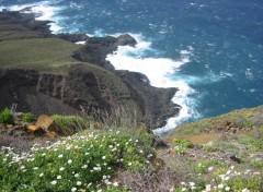 Fonds d'écran Voyages : Afrique La Punta del Teno (1) (Ténérife)