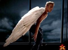 Fonds d'écran Cinéma Angel