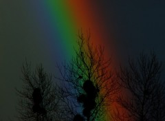 Wallpapers Nature arc en ciel - variation 1