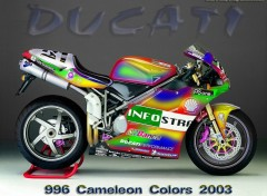 Fonds d'écran Motos Cameleon colors