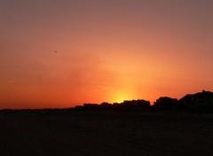Fonds d'écran Nature Sunset Silhouette