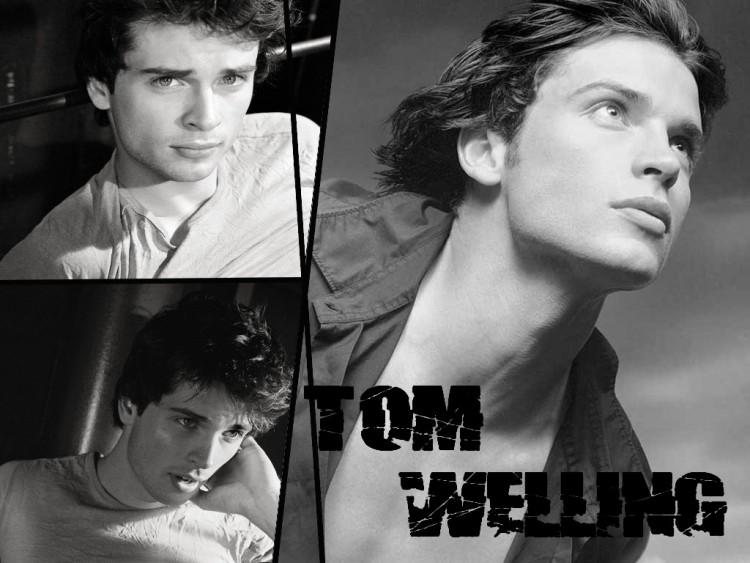 Fonds d'écran Célébrités Homme Tom Welling Tom Welling