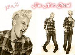 Wallpapers Music P!!!nk