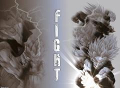 Fonds d'écran Manga fight