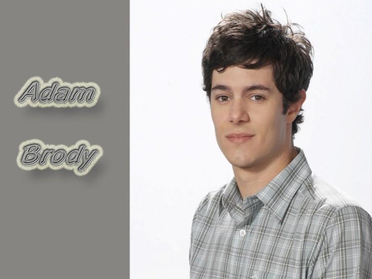 Fonds d'écran Célébrités Homme Adam Brody Wallpaper N°138601