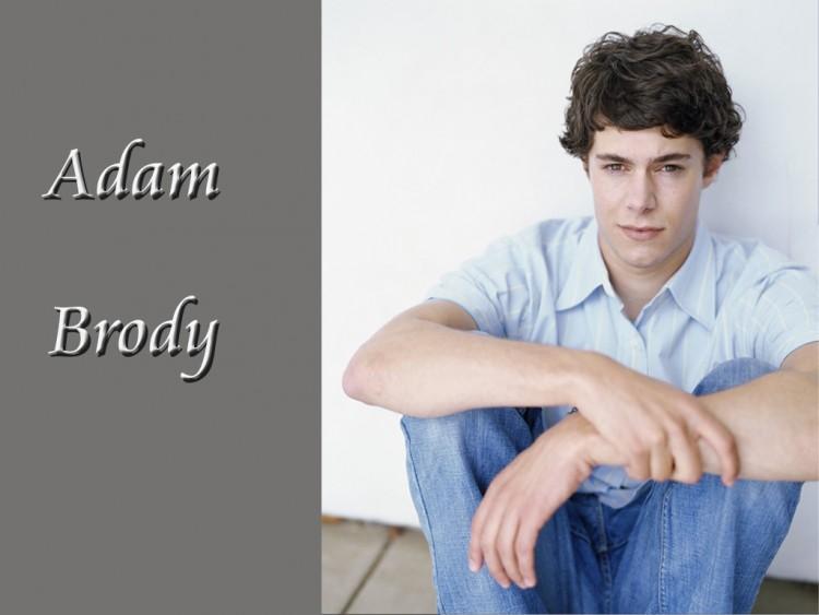 Fonds d'écran Célébrités Homme Adam Brody Wallpaper N°138602