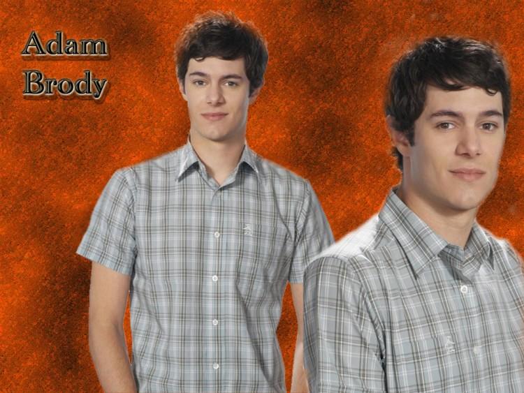 Fonds d'écran Célébrités Homme Adam Brody Wallpaper N°138603