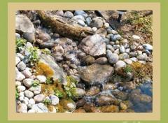 Fonds d'écran Nature Image sans titre N°138560