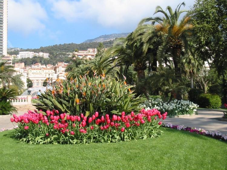 Fonds d'écran Nature Parcs - Jardins Jardins du casino