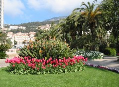 Wallpapers Nature Jardins du casino