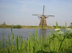 Fonds d'écran Voyages : Europe Moulin à Kinderdjik (Hollande)