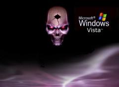 Fonds d'écran Informatique Skull Vista