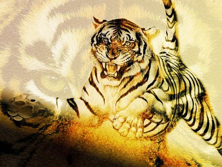 Fonds d'écran Animaux Félins - Tigres Tigre féroce ...