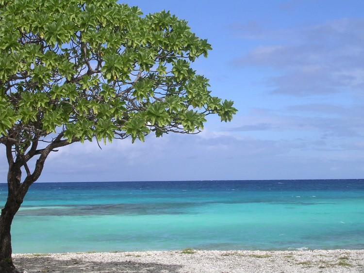 Fonds d'écran Nature Iles Paradisiaques Rangiroa