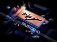Fonds d'écran Voitures logo mustang