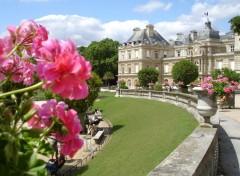 Fonds d'écran Voyages : Europe jardin du Luxembourg