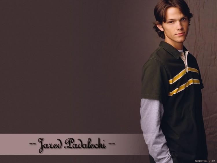 Fonds d'écran Célébrités Homme Jared Padalecki Jared Padalecki