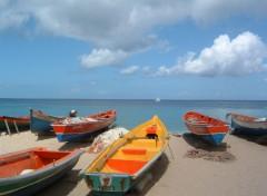 Fonds d'écran Bateaux Bateau de pêche en Martinique