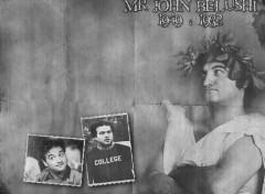Fonds d'écran Célébrités Homme Mr John Belushi