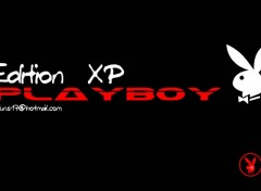 Wallpapers Brands - Advertising Playboy XP