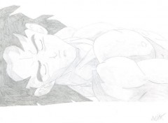 Fonds d'écran Art - Crayon BrolyArt03