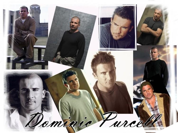 Fonds d'écran Célébrités Homme Dominic Purcell Dominic Purcell