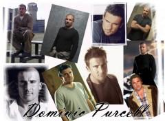 Wallpapers Celebrities Men Dominic Purcell