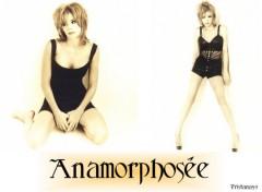 Wallpapers Music Anamorphose