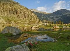 Fonds d'écran Nature Hautes Pyrénées