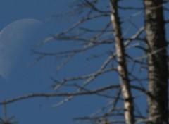 Fonds d'écran Espace Lune de jour