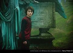 Fonds d'écran Cinéma Harry Potter/Daniel Radcliffe