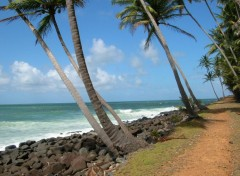 Wallpapers Trips : South America Guyane