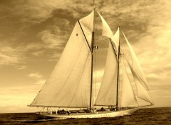 Wallpapers Boats ELEONORA