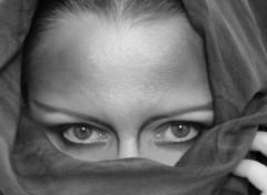 Fonds d'écran Hommes - Evênements Sheherazade