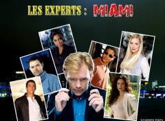 Wallpapers TV Soaps Les experts: miami
