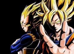 Fonds d'écran Manga Vegeta-Goku
