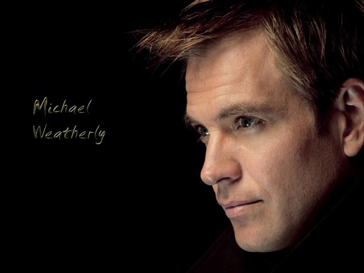Fonds d'écran Célébrités Homme Michael Weatherly Michael W