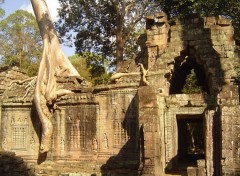 Wallpapers Trips : Asia Angkor