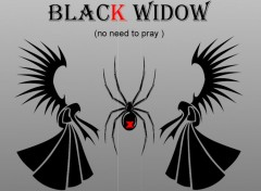 Wallpapers Digital Art the black widow