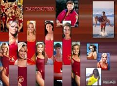 Fonds d'écran Séries TV Alerte à Malibu